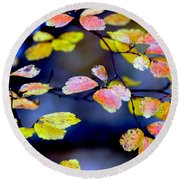 Fall Color Change Round Beach Towel