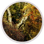 Fall Color Wall Art Landscape Round Beach Towel