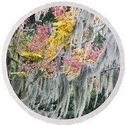 Fall Colors In Spanish Moss Round Beach Towel