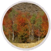 Fall In Snake River Canyon Round Beach Towel
