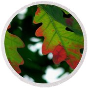 Fall L Eaves Round Beach Towel