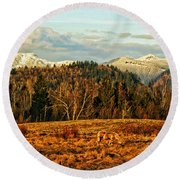 Fall Landscape-hdr Round Beach Towel