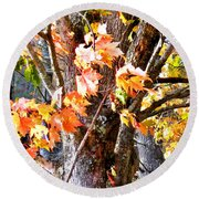 Fall Leaves 2 Round Beach Towel
