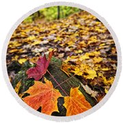 Fall Leaves In Forest Round Beach Towel