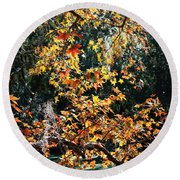 Fall Leaves Over Florida Pond Round Beach Towel