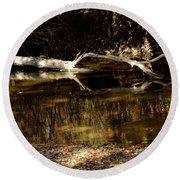 Fall Log Reflection Round Beach Towel