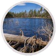 Fall Logs On Reflection Lake Round Beach Towel