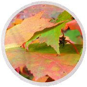 Fall Maple Leaves Round Beach Towel