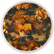 Fall Maple Leaves On Water Round Beach Towel