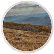 Fall Scene On Whitetop Mountain Va Round Beach Towel