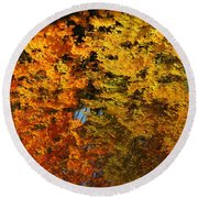 Fall Textures In Water Round Beach Towel by LeeAnn McLaneGoetz McLaneGoetzStudioLLCcom