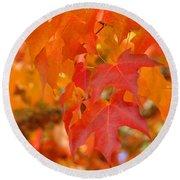 Fall Tree Leaves Art Prints Orange Red Autumn Round Beach Towel