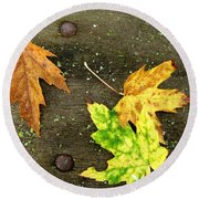 Fall Trio Round Beach Towel