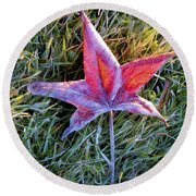 Fallen Autumn Leaf In The Grass During Morning Frost Round Beach Towel