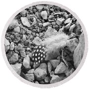 Fallen Feathers Black And White Round Beach Towel