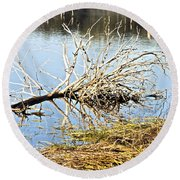 Fallen Tree Round Beach Towel by Douglas Barnard