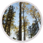 Falling Sunlight Fort Mcmurray Round Beach Towel
