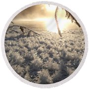 Fanciful Frosty Fractal Forest Round Beach Towel