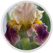 Fancy Iris Dance Ruffles Round Beach Towel