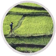 Farmer In Rice Paddy, Elevated View Round Beach Towel