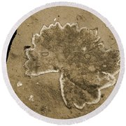Faux Fossil Round Beach Towel