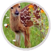 Fawn In Flowers Round Beach Towel
