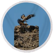 Feather Fluster Round Beach Towel