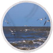 Feed Us - Ferry To Galveston Tx Round Beach Towel by Susanne Van Hulst
