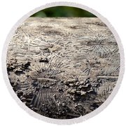 Fell By The Mighty Bark Beetle Round Beach Towel