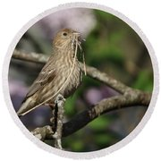 Female Finch Round Beach Towel