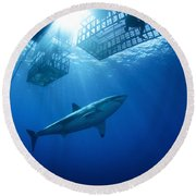 Female Great White With Cages Round Beach Towel