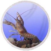 Female Rusty Crayfish Round Beach Towel