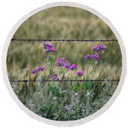Fence And Flowers Round Beach Towel
