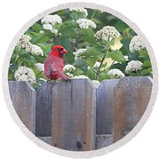 Fence Top Round Beach Towel