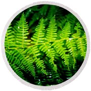 Fern II Round Beach Towel