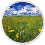 Field Of Flowers, Grasslands National Round Beach Towel