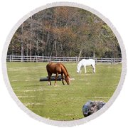 Field Of Horses Round Beach Towel