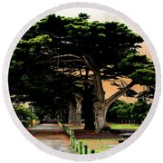 Fig Tree Lane Round Beach Towel