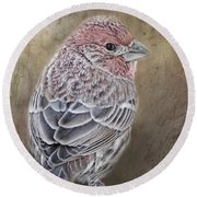 Finch Low Saturation Round Beach Towel