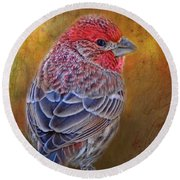 Finch With Gold Texture Round Beach Towel