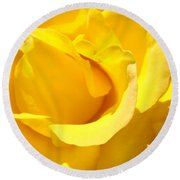 Fine Art Prints Yellow Rose Flower Round Beach Towel