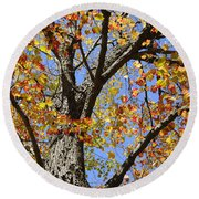 Fire Maple Round Beach Towel by Luke Moore
