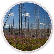 Fireweed  Epilobium Angustifolium Glacier National Park Usa -1 Round Beach Towel