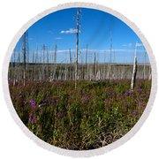 Fireweed  Epilobium Angustifolium Glacier National Park Usa -2 Round Beach Towel