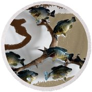 Fish Mount Set 05 C Round Beach Towel
