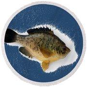 Fish Mount Set 08 C Round Beach Towel