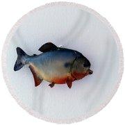 Fish Mount Set 12 A Round Beach Towel