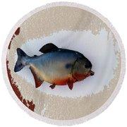Fish Mount Set 12 C Round Beach Towel