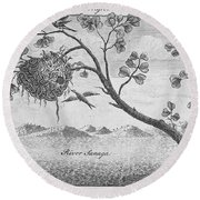 Fisher Bird Round Beach Towel