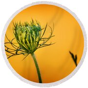 Fixn' To Bloom Round Beach Towel